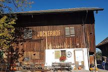 Juckerhof Erlebnisbauernhof, Seegraeben, Switzerland