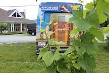 Cville Hop on Tours, Charlottesville, United States