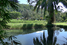 Parc Aquacole, Pointe-Noire, Guadeloupe