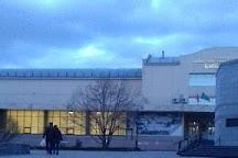 Sakhalin Regional Art Museum, Yuzhno-Sakhalinsk, Russia