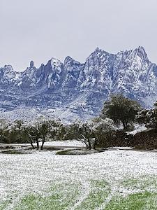 Castellgalí