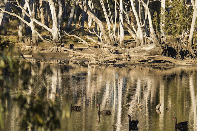 Duck Lagoon, Kangaroo Island, Australia