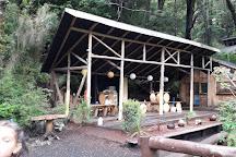 Termas El Rincon, Panguipulli, Chile