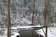 Black Creek Preserve, Esopus, United States