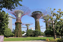 Supertree Grove, Singapore, Singapore