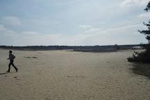 Oerrr op het Mosselse Zand, Otterlo, The Netherlands