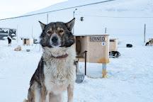 Green Dog Svalbard, Longyearbyen, Norway
