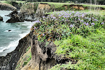 Jug Handle State Reserve, Mendocino, United States