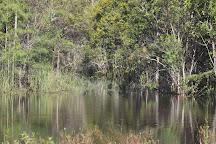 Big Cypress National Preserve, Ochopee, United States