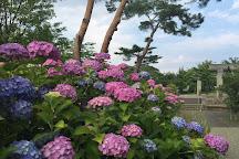Kaiseiyama Park, Koriyama, Japan
