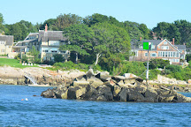 Cape Ann Whale Watch, Gloucester, United States