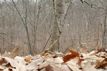 Stephens State Park, Hackettstown, United States