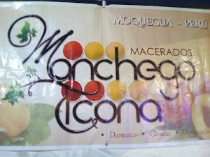 Vinos Manchego Ticona 5