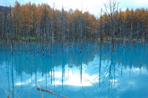 Shirogane Blue Pond, Biei-cho, Japan