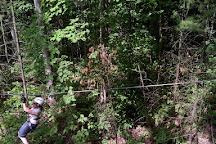 Treetop Trekking - Ganaraska, Campbellcroft, Canada