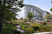 Nagoya Port Wildflower Garden Blue Bonnet, Nagoya, Japan