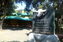 Bison Lodge Museum, Pachmarhi, India