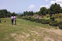 Botanical Garden Kokernag, Anantnag, India