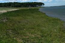 Laguna de Rocha, Rocha, Uruguay