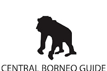 Central Borneo Guide, Palangkaraya, Indonesia