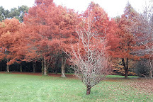 Te Popo Gardens, Stratford, New Zealand