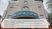 Элиса, улица Гагарина на фото Сочи