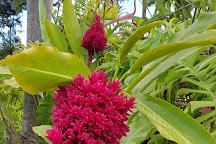 Le Jardin de la Rencontre, Capesterre-Belle-Eau, Guadeloupe