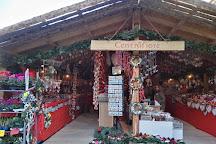 Mercatino di Natale, Trento, Italy