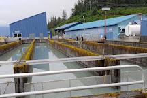 The Solomon Gulch Hatchery, Valdez, United States
