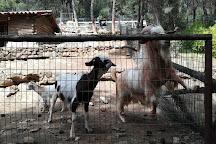 Thessaloniki Zoo, Agios Pavlos, Greece