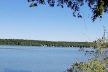 Beaver Lake, Alpena, United States