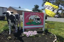 Chesapeake Bay Farms, Pocomoke City, United States