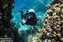 Coral Garden Diving Center, Aqaba, Jordan