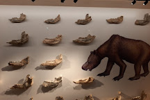Megafauna Central - Museum and Art Gallery of NT, Alice Springs, Australia