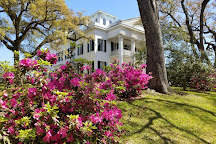 Stanton Hall, Natchez, United States