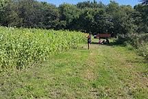 Minnesota Harvest, Jordan, United States