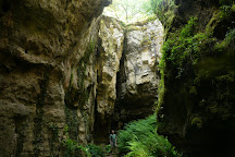 Phosphatiere du Cloup d'Aural, Bach, France