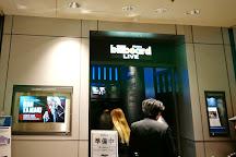 Billboard Live Osaka, Osaka, Japan