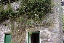 Woodville Walled Garden, Kilchreest, Ireland