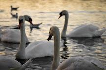 Linlithgow Loch, Linlithgow, United Kingdom