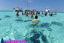 Stingray City Grand Cayman, Grand Cayman, Cayman Islands