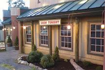 Pines Dinner Theatre, Allentown, United States