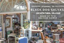 Black Dog Salvage, Roanoke, United States