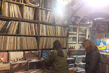 Data Records 93, Florence, Italy