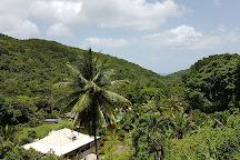 Cascade le Saut de L'Acomat, Pointe-Noire, Guadeloupe