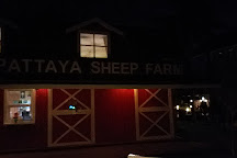 Pattaya Sheep Farm, Pattaya, Thailand