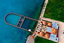 Delphinus Puerto Morelos, Puerto Morelos, Mexico