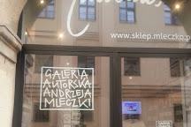 Galeria Autorska Andrzeja Mleczki, Krakow, Poland