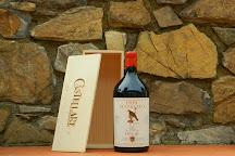 Castellare di Castellina Winery, Castellina In Chianti, Italy