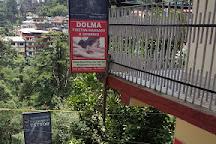 Holistic Massage Centre, McLeod Ganj, India